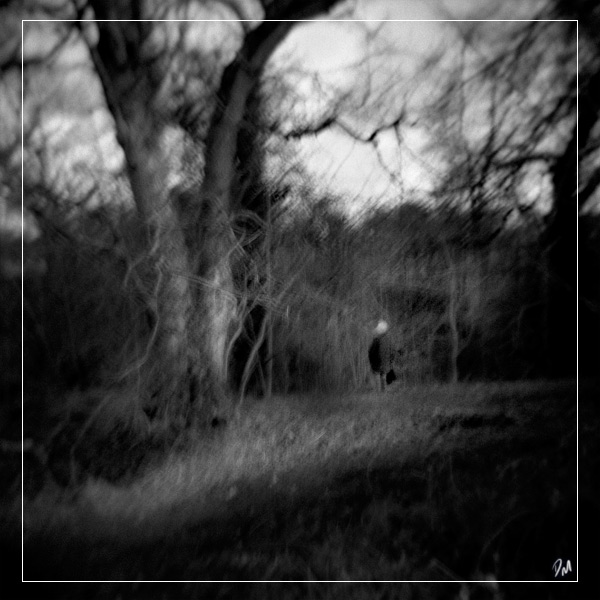 "Seclusion | <a href=""http://mcaleavy.org/techniques/cameras/holga-120gn/"">Holga 120GN</a>"